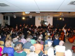 ELvis Concert no. 3